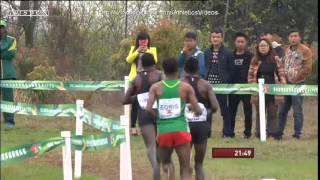 2015 world cross country championships men