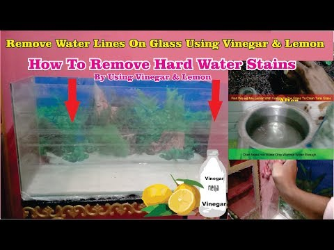 Removing Hard Water Stains from Aquarium # How to remove calcium build-up or white lines