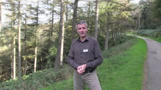 Cwmcarn Forest Drive - September 2014 (Full version)