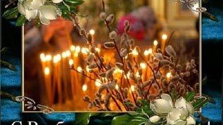 Красивая видео открытка  'С Вербным Воскресеньем' для друзей