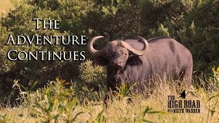 African Safari on the Eastern Cape | The Adventure Continues
