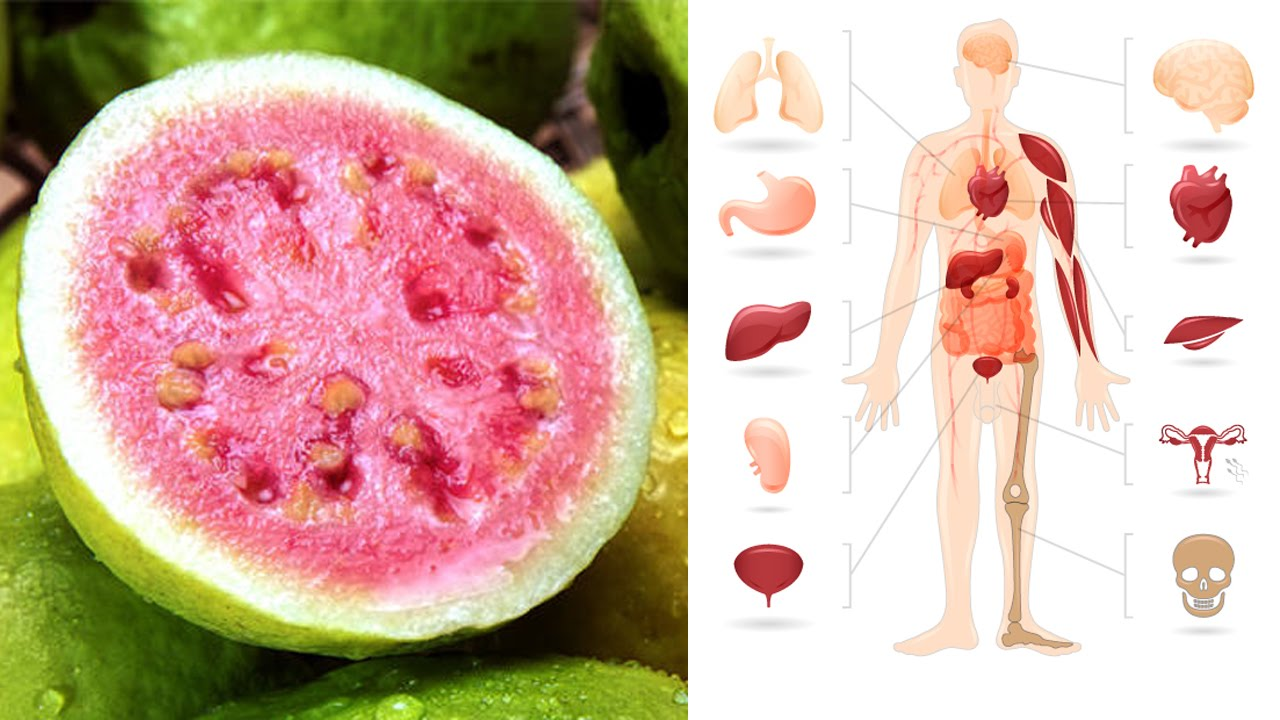 least healthy fruits guayaba fruit