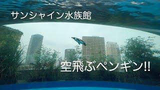 2017年7月 サンシャイン水族館ダイジェスト! PART3 thumbnail