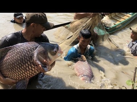 Top 4 Unbelievable Pro Fisherman Hunting River Monsters