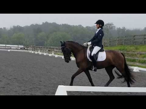 Proudly Shining and Hannah 2nd 1