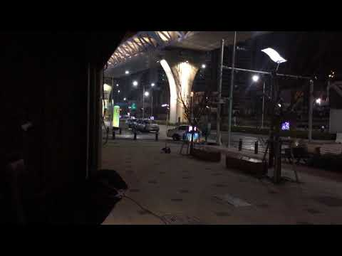 Black Panther March 2017. Korea filmed by Joe Montenegro