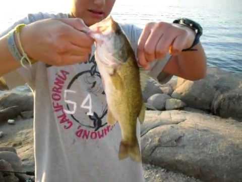 Pesca en el embalse de Burguillo Black bass