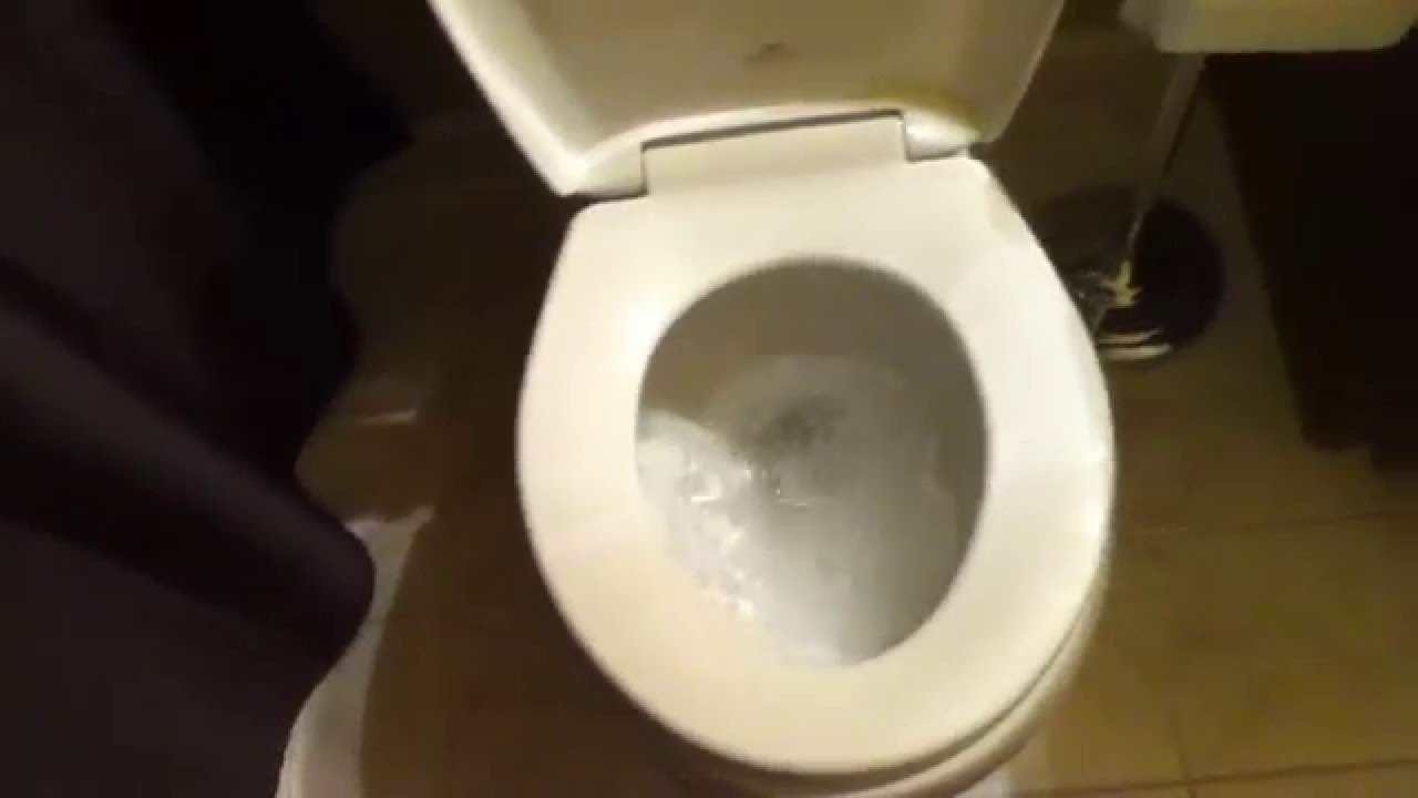 Fergusion Toilet With Church Easy Clean Toilet Seat Youtube