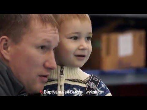 В Выксе прошел Всероссийский турнир по спортивному и боевому самбо среди юношей и девушек