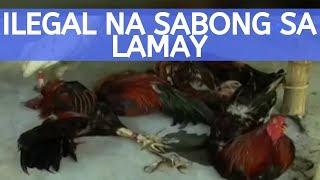 UB: 4 na lalaki, arestado dahil sa ilegal na sabong sa lamay