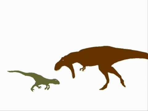 gfc tyrannosaurus vs utahraptor youtube