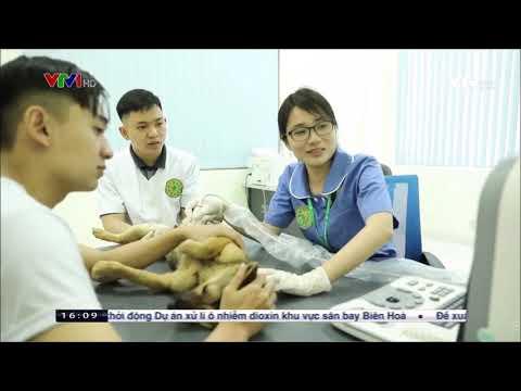 Khánh thành Bệnh viện Thú y lớn nhất Việt Nam   VNUA - VTV