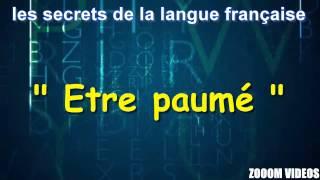 Les Secrets De La Langue Française : Etre paumé