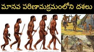 మానవ పరిణామక్రమం లోని దశలు || phases of human evolution || ఆదిమానవుల చరిత్ర || Babu Gogineni