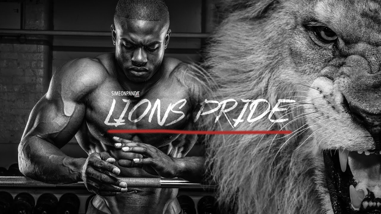 Bodybuilding Wallpapers With Quotes Simeon Panda Lions Pride Bodybuilding Motivation Youtube