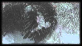 """Frostwork -  """"Cast From His Wings"""" Official Video"""