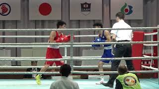 H30 全日本 F級 杉本聖弥 対 田中亮明 ボクシング