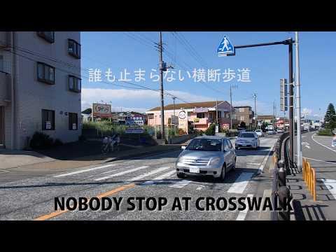 NOBODY STOP AT CROSSWALK IN JAPAN