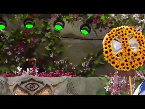 TomorrowWorld 2014 | Carnage