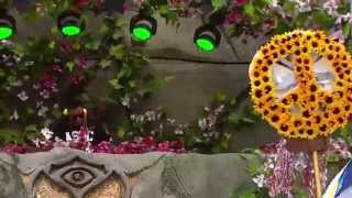 TomorrowWorld 2014 | Carnage