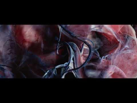 Robot Koch - Manifold (Official Video)