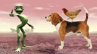 домашние животные для детей умный ребенок | учить животных для детей| развивающие мультики | часть 2