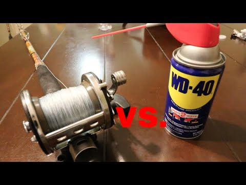 The TRUTH Of WD40 Vs Fishing Reels !!!