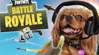 Dog Plays Fortnite! - Evie The Talking Dog