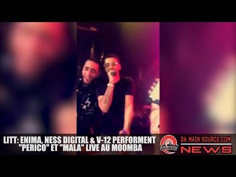 Enima, Ness Digital & V-12
