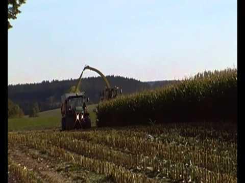 Sklizeň kukuřice pro BPS Trstěnice