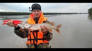 OmskSpinClub #66. Рыбалка в Омской области на Иртыше. Судак и щука на джиг.