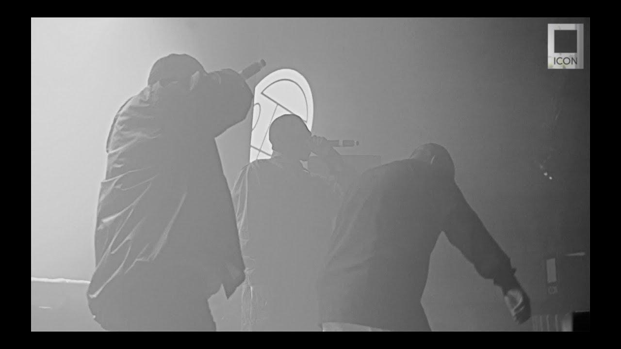 Видеоотчет - ГРИБЫ