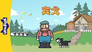 Bingo (宾戈) | Sing-alongs | Chinese song | By Little Fox