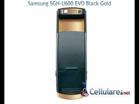 Samsung  SGH-U600 Black Gold