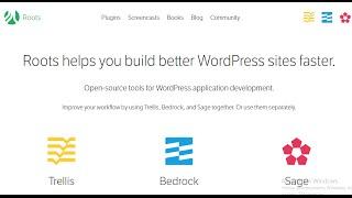видео Используем WordPress как Framework