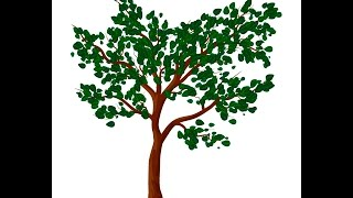 Tree with leaves - Adobe Illustrator cs6 tutorial. How to draw vector tree with green leaves