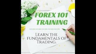 Forex 101 Beginners Basics