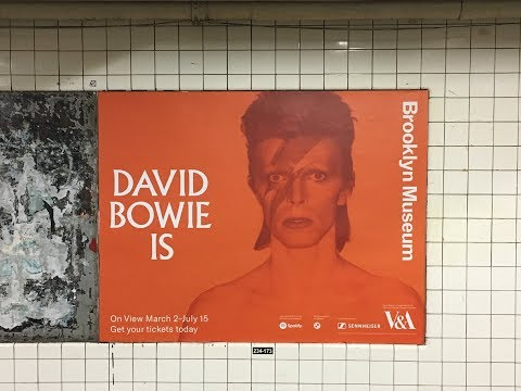 The 'David Bowie