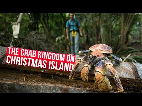 Christmas Island with Google Streetview!