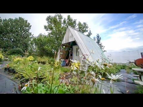 Two Alaskan Tiny Houses  ~ True Alaskan Enginuity