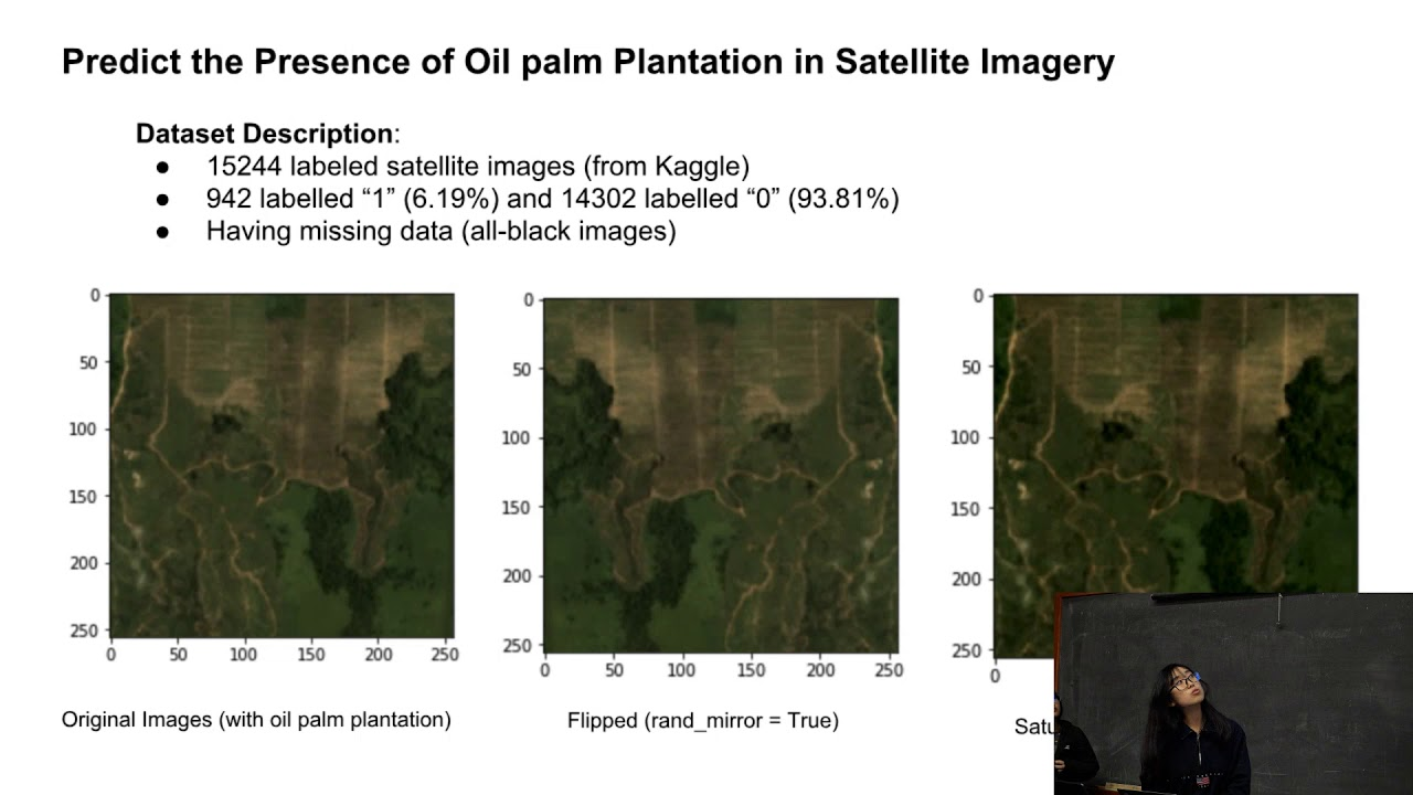 10  Predict the presence of oil palm plantation in satellite