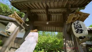 2017年11月26日(日) 覚園寺三蔵(鎌倉) 『林美里マリンバリサイタル』 In...