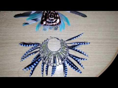 Поделки из перья попугая и птиц, крылья селезня
