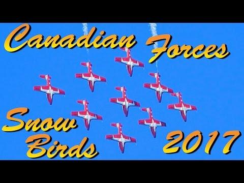 Canadian Forces Snowbirds / 2017 Fort Lauderdale Air Show