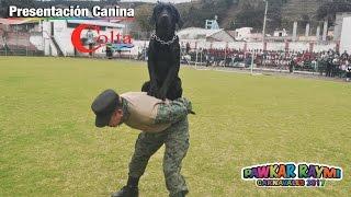 PRESENTACION CANINA PAWKAR RAYMI  CARNAVALES COLTA 2017