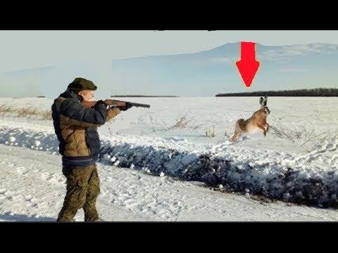 Как правильно стрелять по зайцу видео уроки