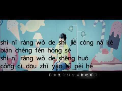 有点甜 you dian tian wang su long (pin yin )