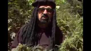 Jorge Cervantes Ultimate Marijuana Grow Guide (Full)