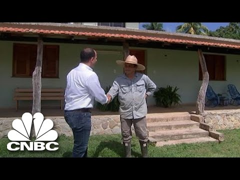 The King Of Cuban Agriculture   The Profit   CNBC Prime