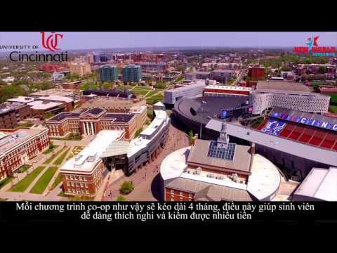 Du Học Mỹ - University of Cincinnati